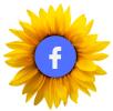 Find Dianne Westbrook on Facebook
